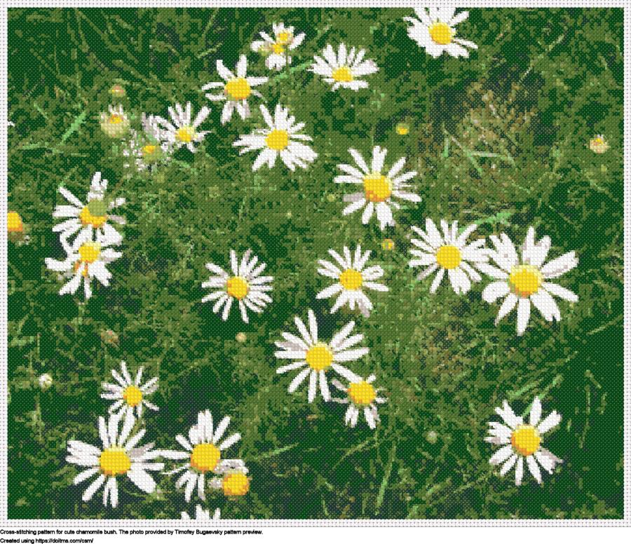 Free Flowers cross-stitching design