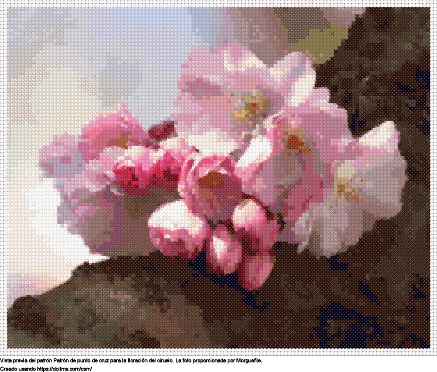 La floración del ciruelo
