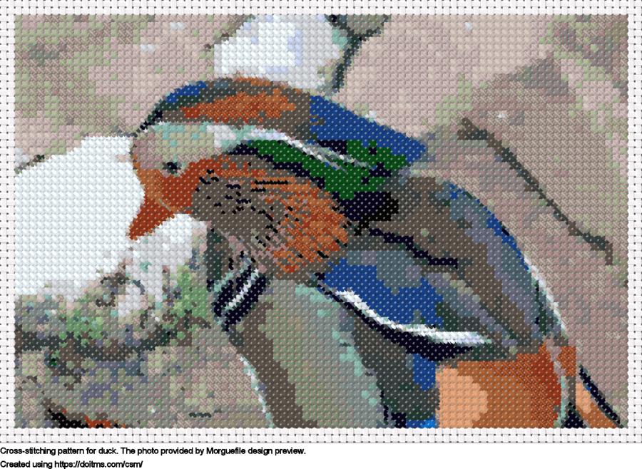 Free Duck cross-stitching design
