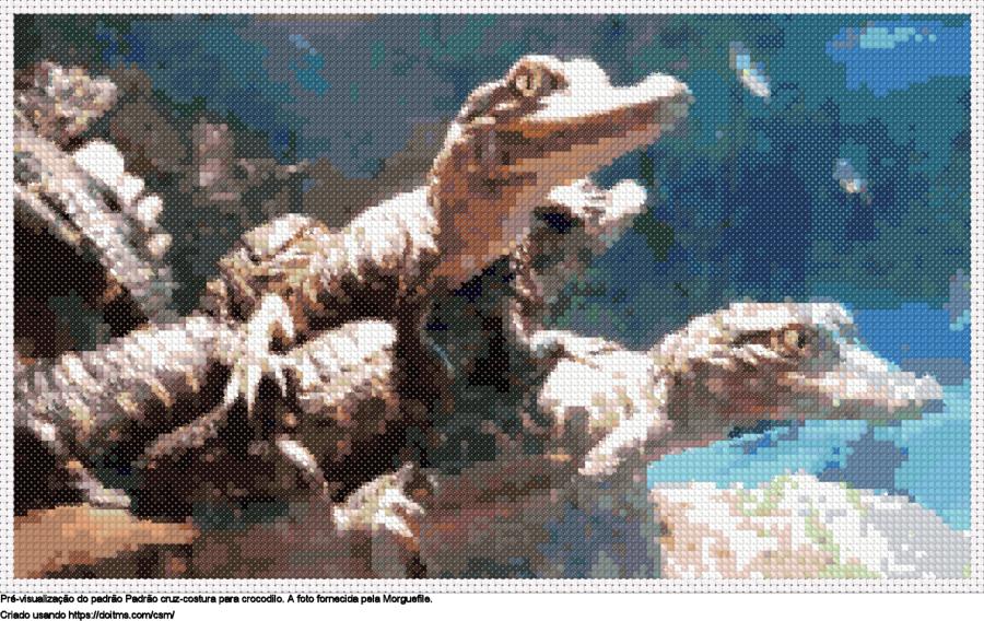 Desenhos Crocodilo de ponto-cruz gratuitos