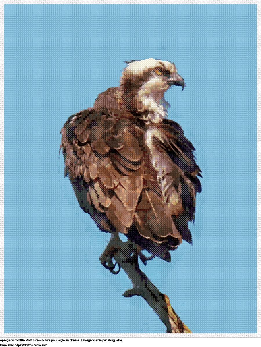 Motif de point de croix Aigle gratuit