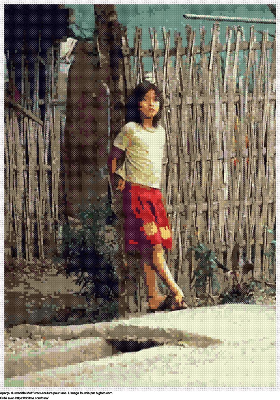 Motif de point de croix Laos gratuit